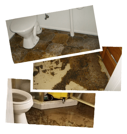 Sewage Cleanup West Sayville NY